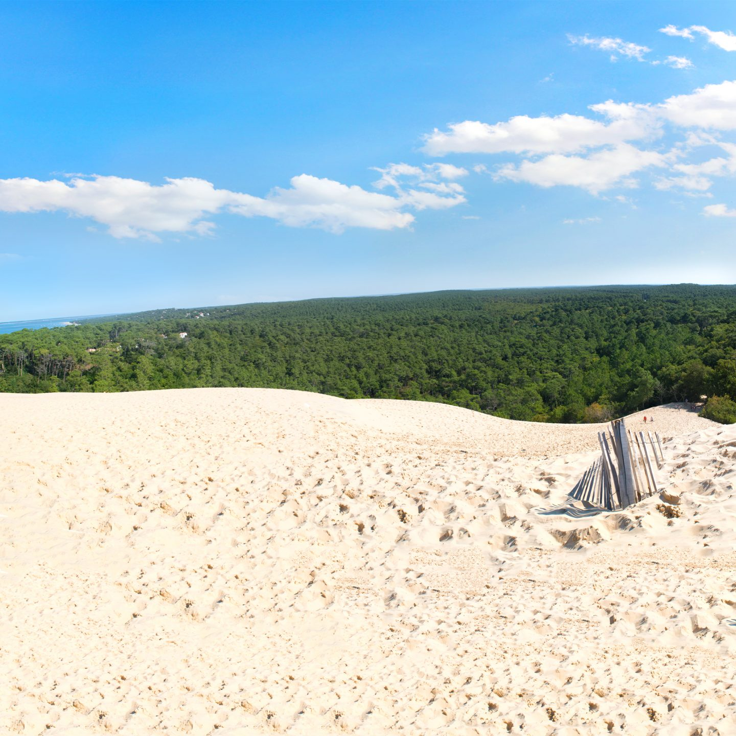 Discover The Dune Of Pilat